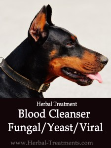Blood Detoxification- Fungal / Yeast / Viral - for Dogs