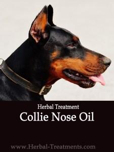 Collie Nose Oil