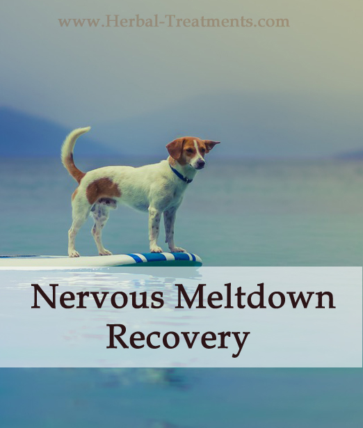 Herbal Treatment - Nervous Meltdown Recovery for Dogs