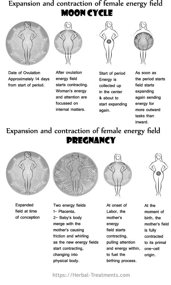female_energy_field