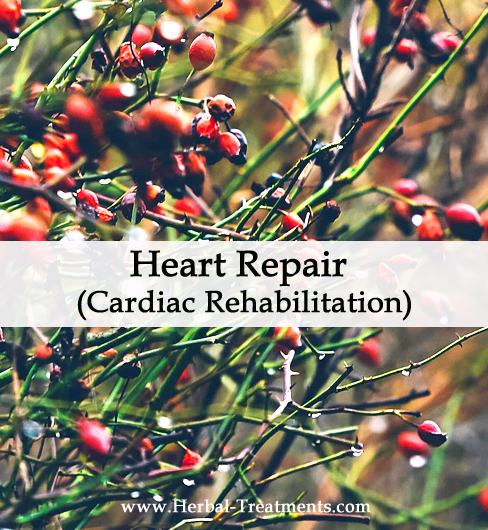 Herbal Medicine for Heart Repair (Cardiac Rehabilitation)