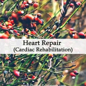 Herbal Medicine for Heart Repair (Cardiac Rehabilitation)