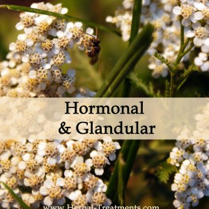 Herbal Treatments for Hormonal and Glandular Conditions