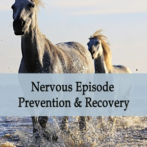 Herbal Treatment - Nervous Episode Prevention & Recovery for Horses