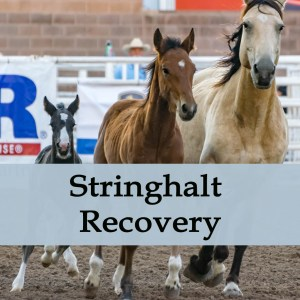 Herbal Treatment for Stringhalt Recovery in Horses
