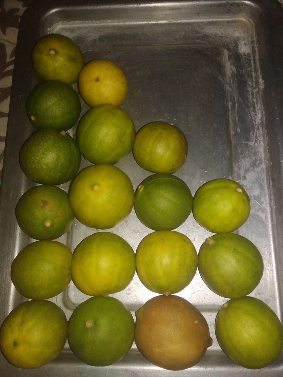 limes-drying