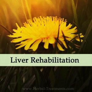 Herbal Medicine for Liver Rehabilitation