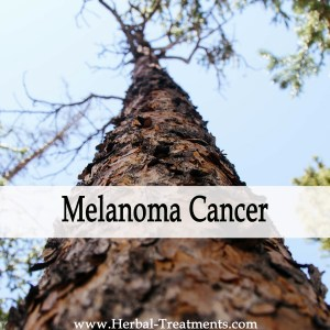 Herbal Medicine for Melanoma Cancer Recovery & Prevention