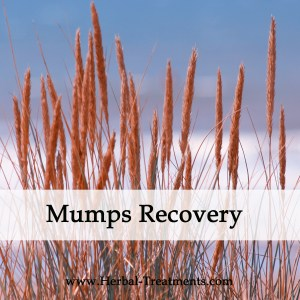 Herbal Medicine for Mumps Recovery