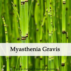 Herbal Medicine for Myasthenia Gravis