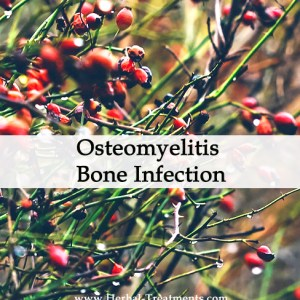 Herbal Medicine for Osteomyelitis Bone Infection