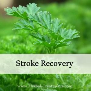 Herbal Medicine for Stroke Recovery