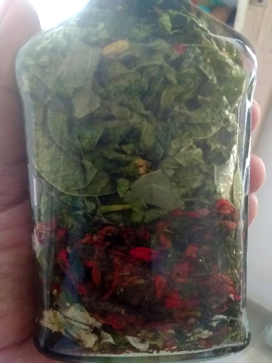 tinctures-herbal-medicine