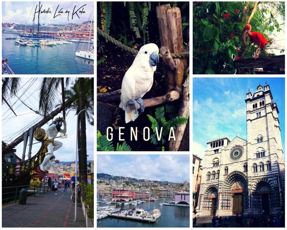 One day trip in Gonoa