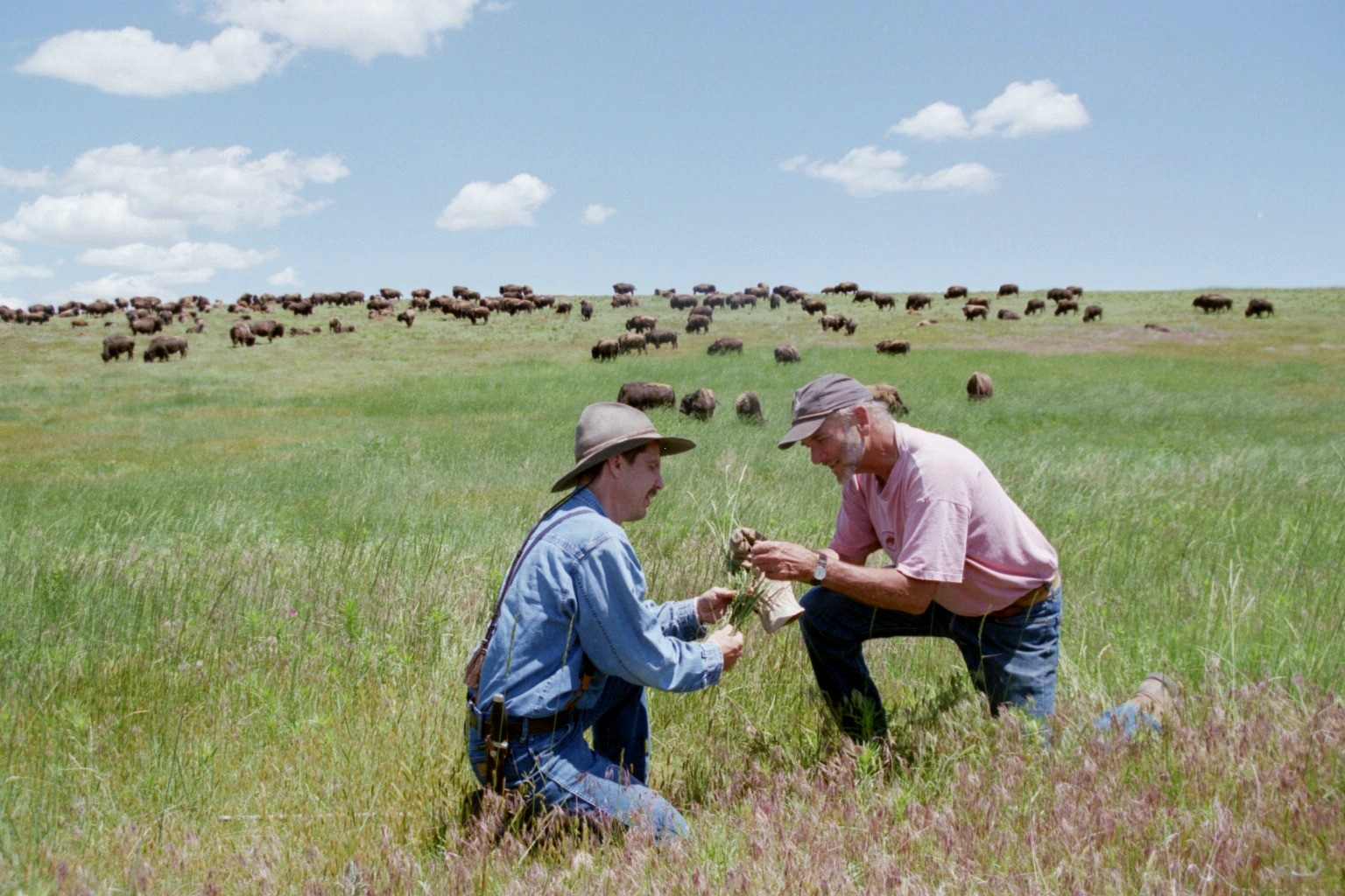 Learn To Make Holistic Decisions For Stronger Farms And