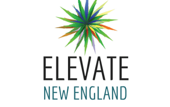 Leading Together – Introducing Elevate New England