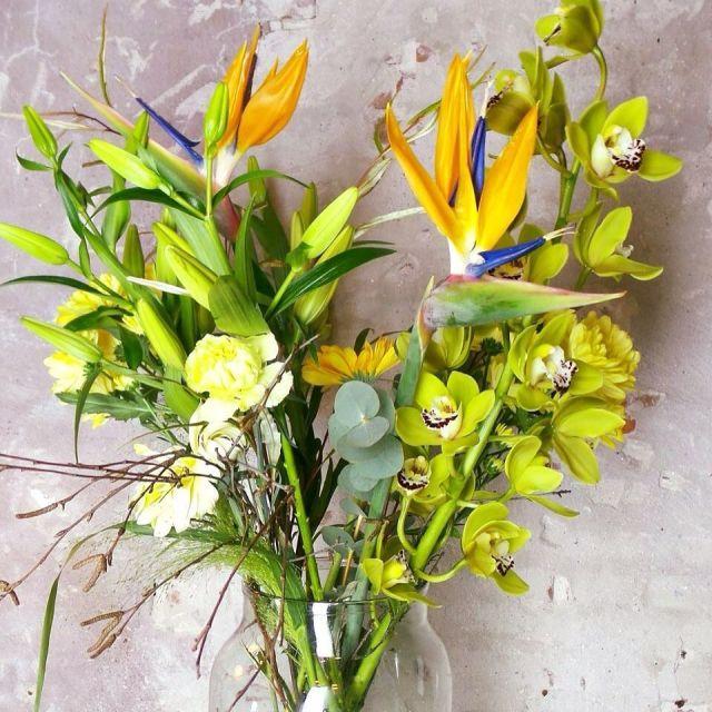 Happy Sunday Inspiration by devakbloemist hollandstrelitzia vakbloemist bloemist fiorista fleuristehellip