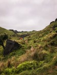 Waitomo-Trail-Run_35