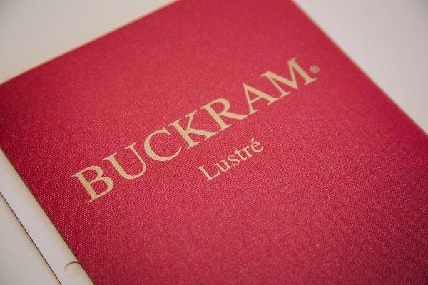 Lustre Buckram by Holliston