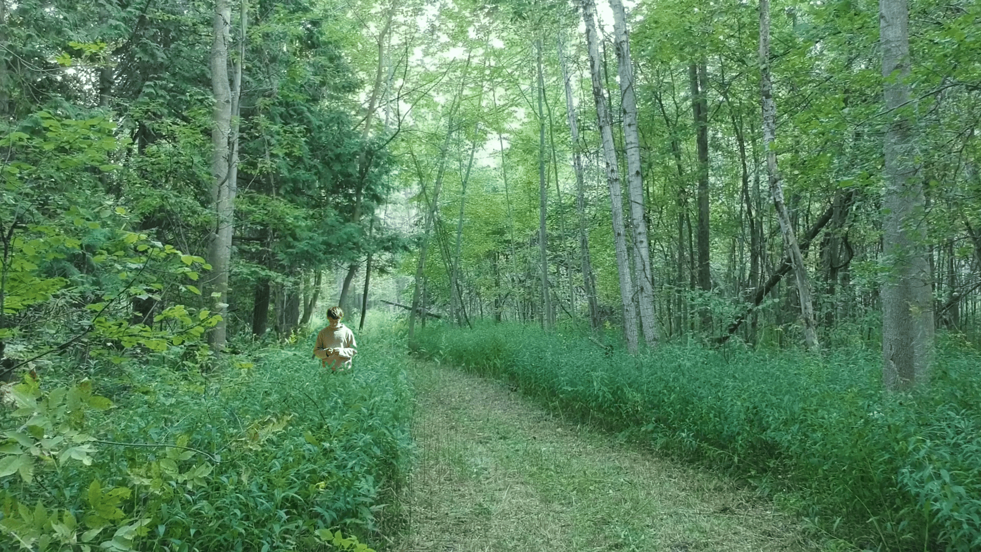 single child amongst the meadowed trail at The Hollows Camp