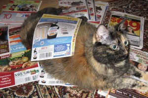 cat_coupons