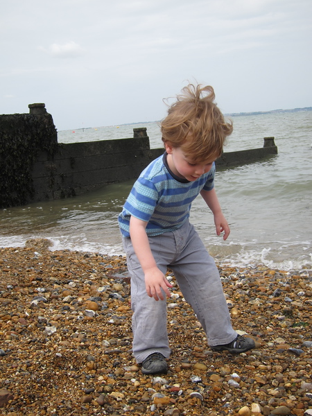 More shell picking