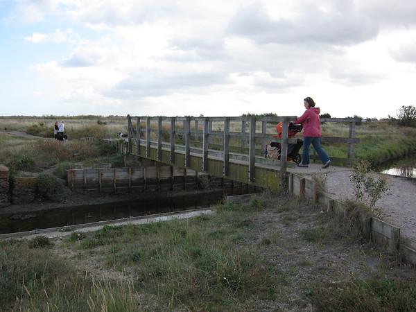Swampy salt marsh