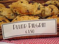 Plump Pilgrim