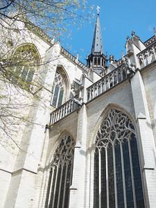 MAS-2012-04-11-IMG_0895