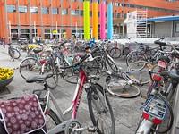 MAS-2012-04-11-IMG_0863