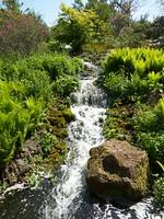 MAS-2012-05-28-IMG_8387
