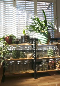 Our makeshift shelves, housing our plants and dried herbs from the garden. The herbs and pepers will move their way into the kitchen, once the kitchen shelves are up.