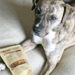 Why We Love Simple Wag Natural Dog Treats