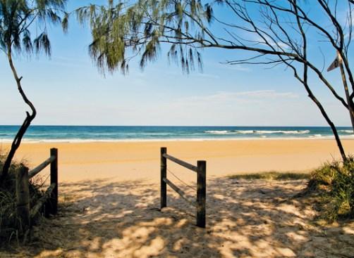 casuarina-beach