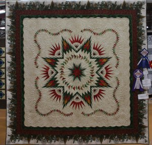 """Linda B's Glacier Star - I love how she added to the main body of the quilt with her """"tucked"""" border and this beautiful Jason Yenter print."""