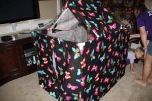 The fort!