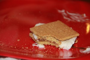 Hey who took a bit out of my Smore?