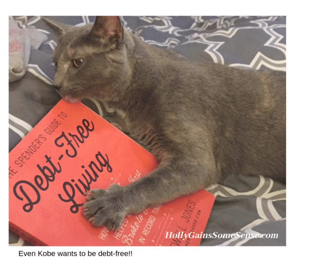 cat with the Debt Free Living book