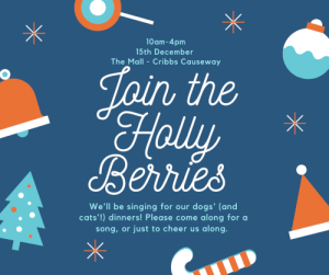Holly Berries 2019 @ The Mall at Cribbs Causeway   Patchway   England   United Kingdom
