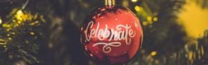 Marcas de Natal em julho |  Ninho de pássaro de Holly 2