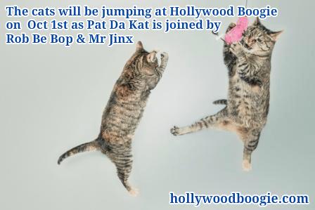 cats jumping oct dance