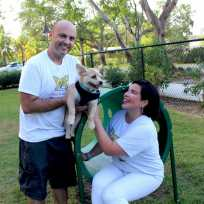 IMG_2465 Hollywood couple pursues passion for pets as professional dog walkers