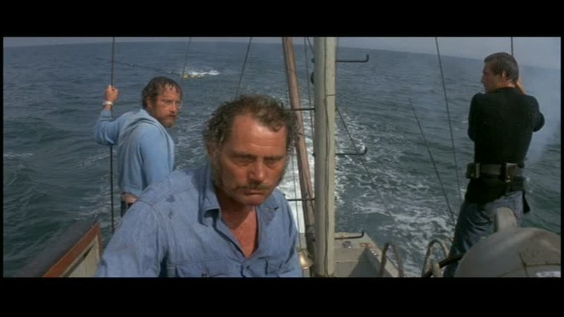 Saturday DOobie Feature Jaws