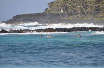 Surfers lining up