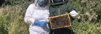 Our Beekeeping Exeperiences Were Launched