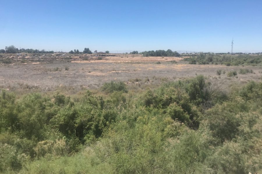 Holtville Wetlands Project Stuck in Mud by Engineers
