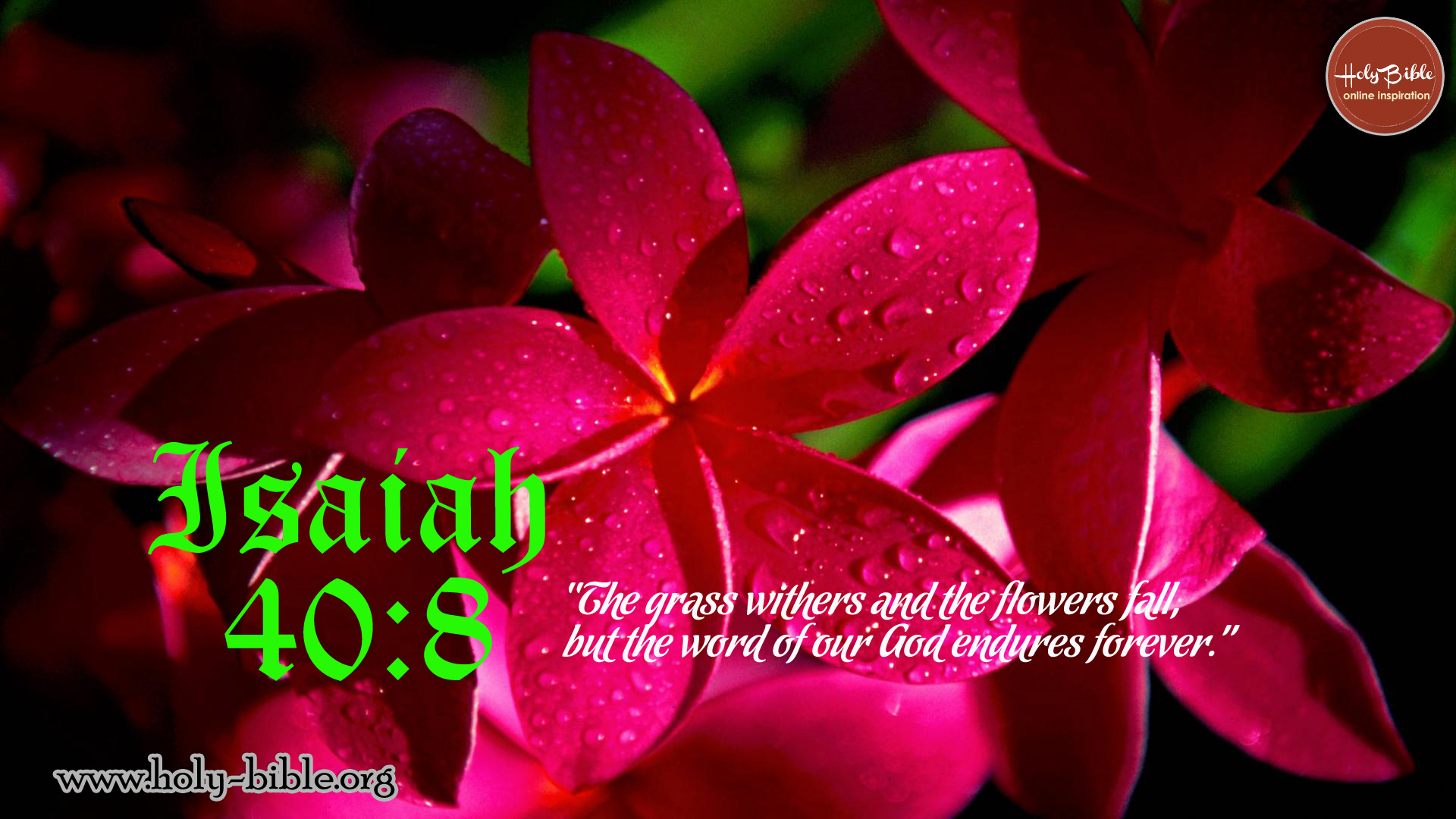Bible Verse Of The Day Isaiah 40 8