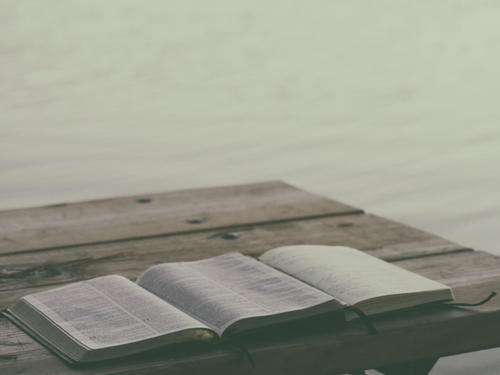 Compare Journal Bibles