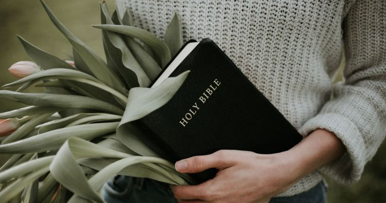 ESV Bible Pros and Cons
