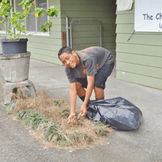 March 2015 Clean up 1